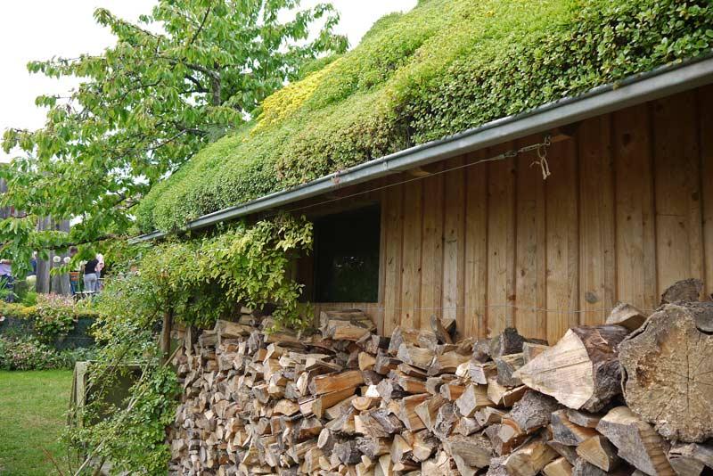Garagendach Begrünen möglichkeiten der begrünung eines flachdaches oder einer garage