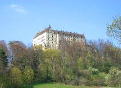 schloss-heiligenberg