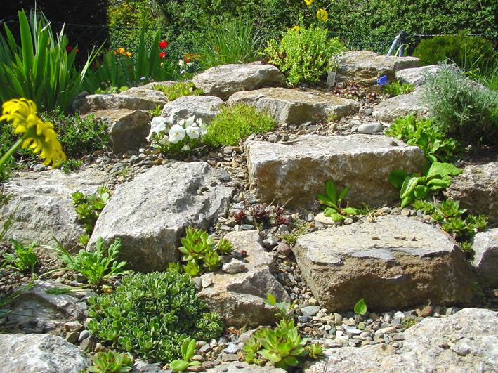 Steingarten Und Trockenmauern Dachbegrunung Information Pflanzenshop