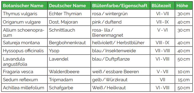 Kr-uter-Naschgarten1