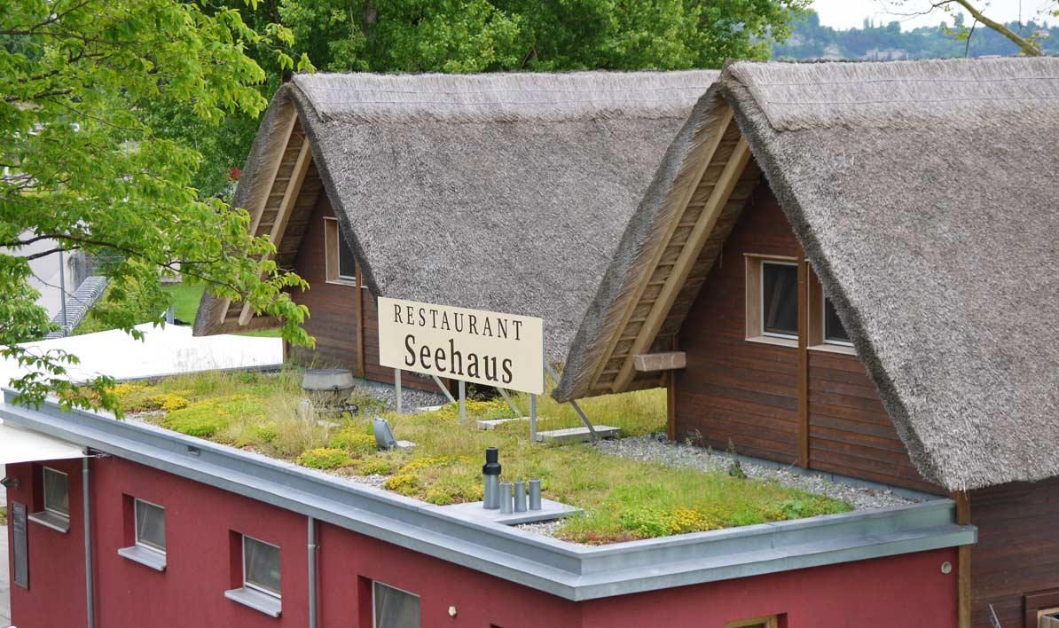 Dachgarten24-Seehaus-Dachbegruenung